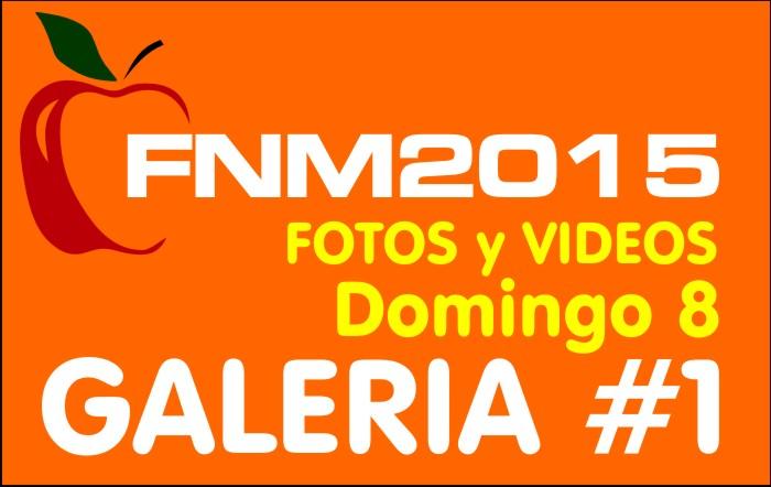 FIESTA NACIONAL de la MANZANA 2015 – GALERIA FOTOS y VIDEOS DIA DOMINGO – GALERIA 1