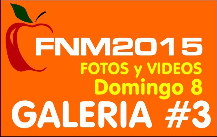 FIESTA NACIONAL de la MANZANA 2015 – GALERIA FOTOS y VIDEOS DIA DOMINGO – GALERIA 3