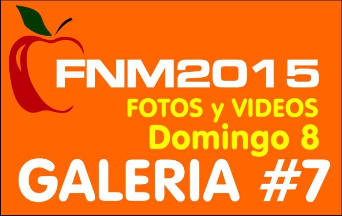 FIESTA NACIONAL de la MANZANA 2015 – GALERIA FOTOS y VIDEOS DIA DOMINGO – GALERIA 7