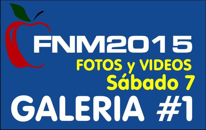 FIESTA NACIONAL de la MANZANA 2015 – GALERIA FOTOS y VIDEOS DIA SABADO – GALERIA 1