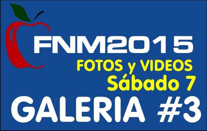FIESTA NACIONAL de la MANZANA 2015 – GALERIA FOTOS y VIDEOS DIA SABADO – GALERIA 3