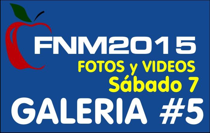 FIESTA NACIONAL de la MANZANA 2015 – GALERIA FOTOS y VIDEOS DIA SABADO – GALERIA 5