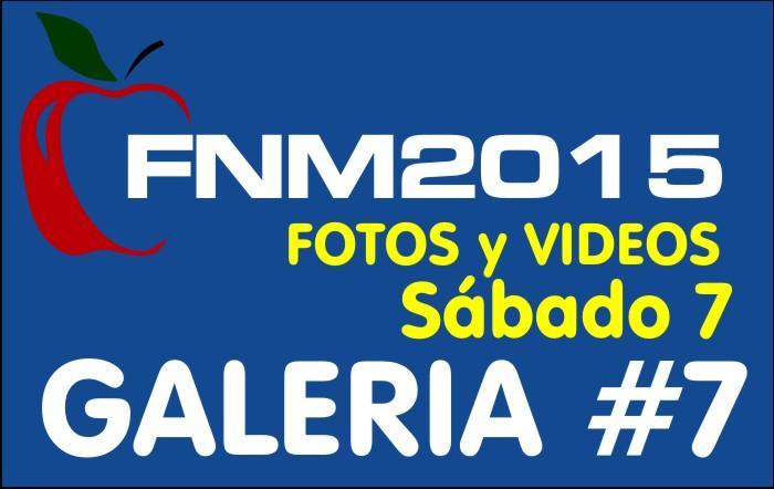 FIESTA NACIONAL de la MANZANA 2015 – GALERIA FOTOS y VIDEOS DIA SABADO – GALERIA 7